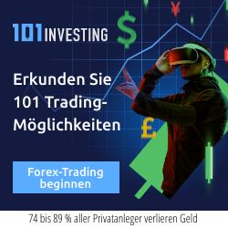101Investing – Erfahrung und Test